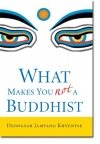 what-makes-you-not-a-buddhist.jpeg
