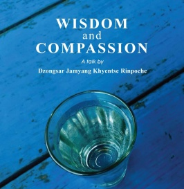 Wisdom-and-compassion-vancouver-2015.jpg